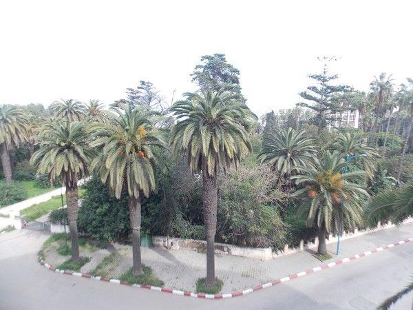 résidence Kamal Park