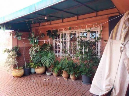 Duplex quartier El Alia