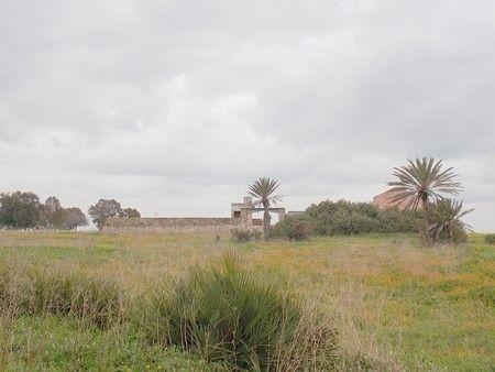 cherche terrain agricole en location